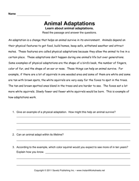 Animal Adaptations Comprehension — Instant Worksheets