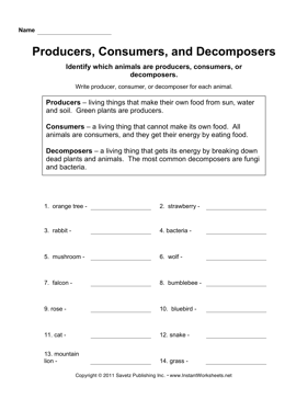 Producers Consumers Decomposers — Instant Worksheets