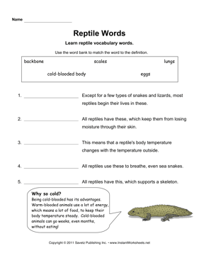 Reptile Words