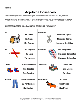 Worksheets Possessive Adjectives Spanish Worksheet spanish possessive adjectives 2 instant worksheets 2